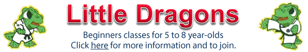 little dragons 2015 banner ad