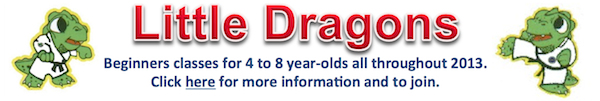 little dragons Jan 2013 banner ad